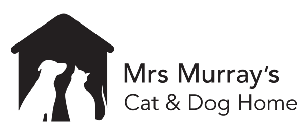 mrs murrys cat and dog home